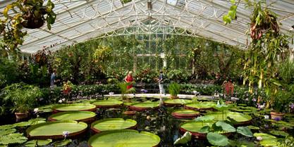 visit-to-kew-gardens-29093000_10x5