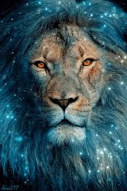lion leo images